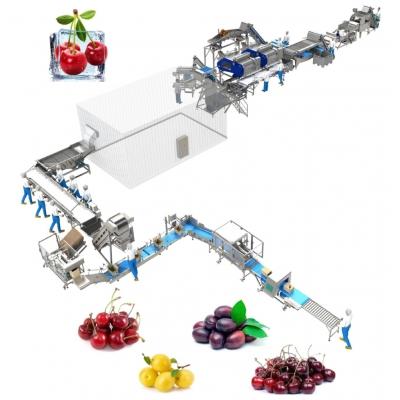Линия для переработки вишни и машина для выбивания косточки