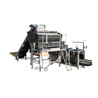 Линия для упаковки овощей в сетку до 17 тонн в час